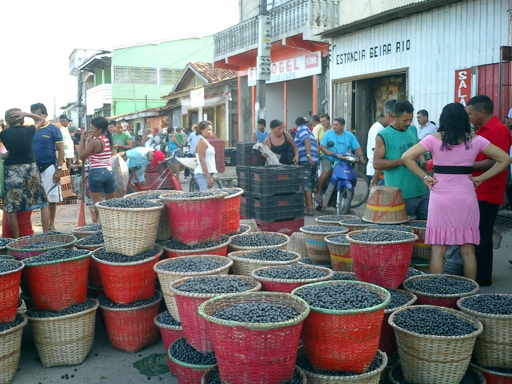 Amazonas 2011_Acai
